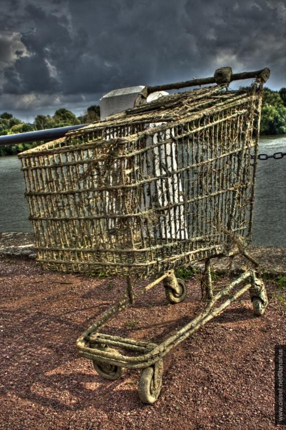 oissel-net-caddie-zombie-2008