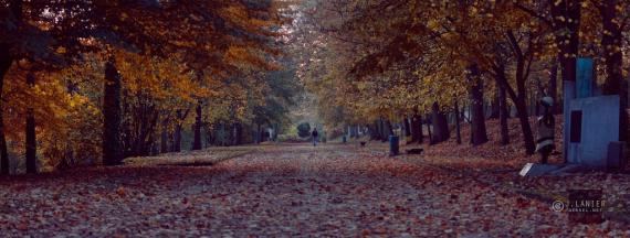 oissel-net-automne-au-jardin-1_2011-11